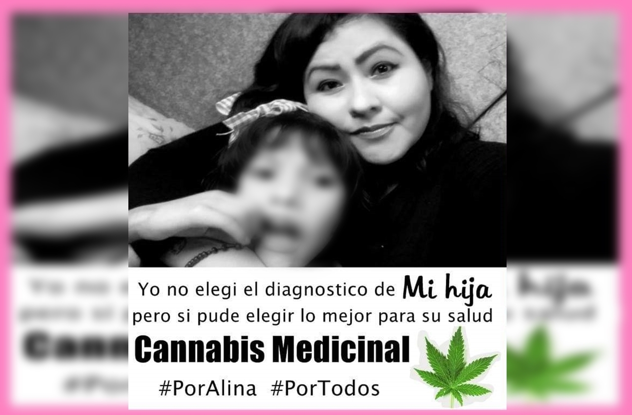 Marihuana mejoró la salud de Alina, hoy agradecen despenalización