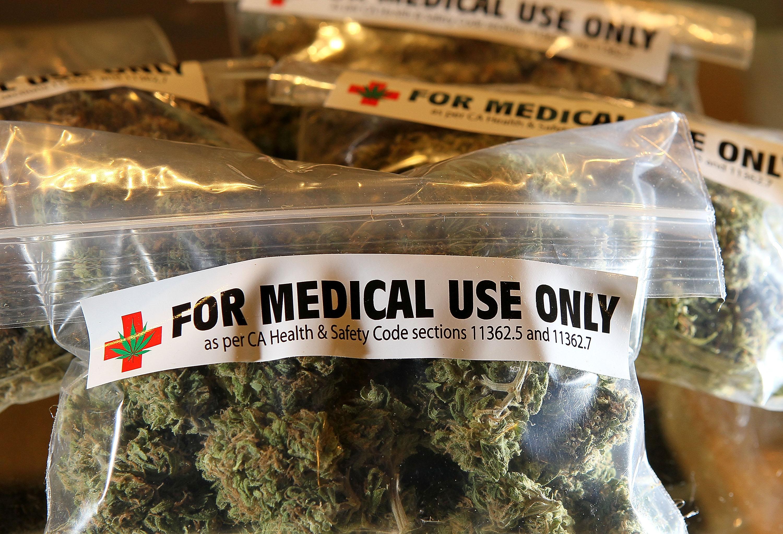 Veracruz: hay tres solicitudes para uso medicinal de marihuana