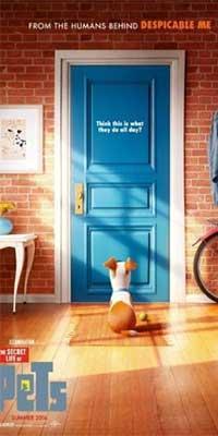 Adelanto de La Vida Secreta de Tus Mascotas