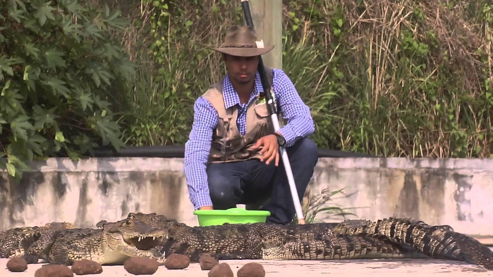 Por falta de apoyo en materia ambiental, cierran 200 UMAS en Veracruz