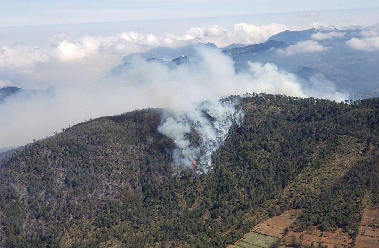 Municipios deben apoyar en combate a incendios forestales: Sedema