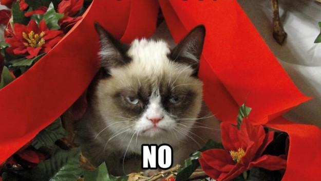 ¿Odias la Navidad? Estos famosos también