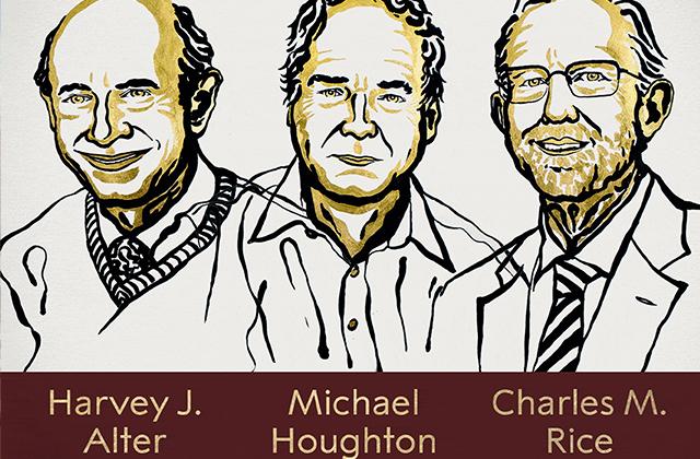 Premio Nobel de Medicina para científicos que frenaron hepatitis C