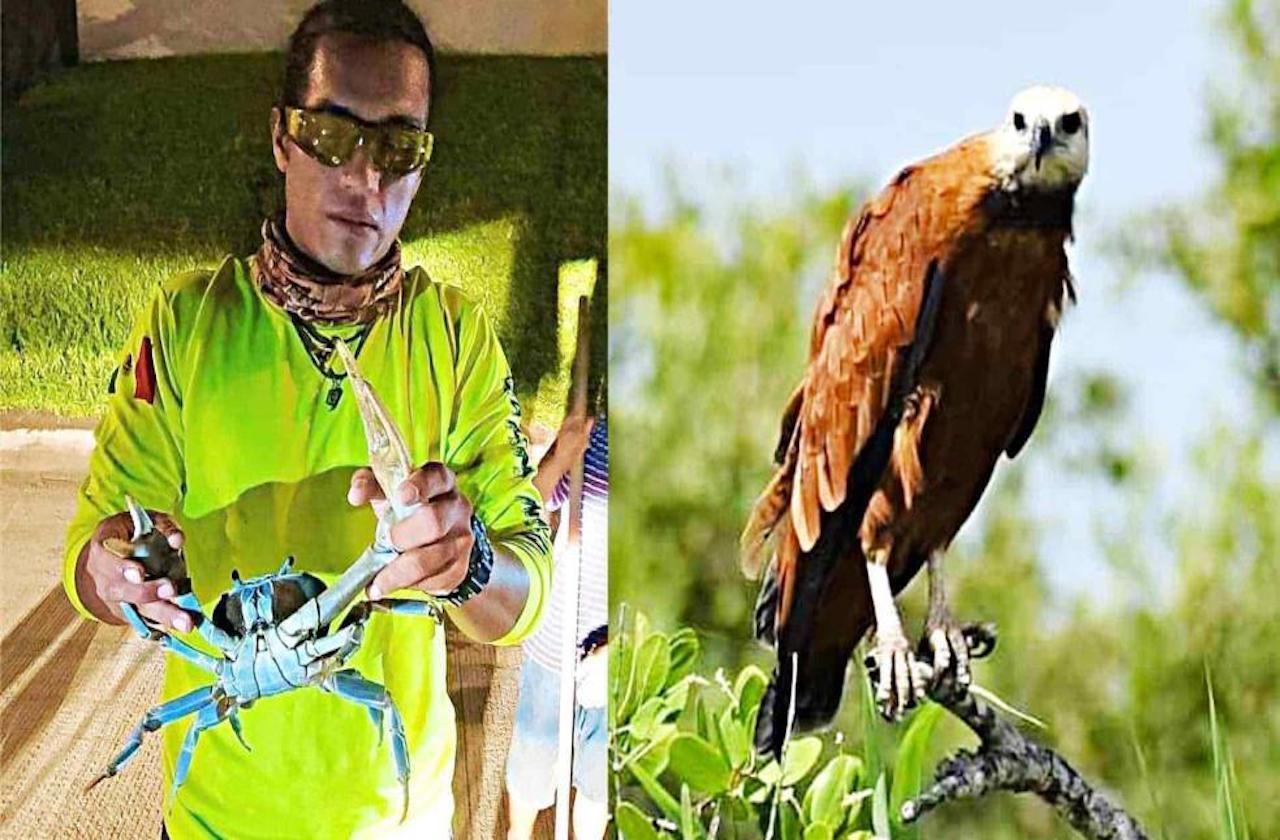 Pandemia pausó programas de preservación de fauna