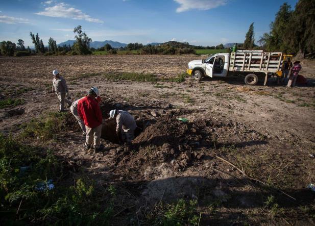 Daños irreversibles en suelo de Tlahuelilpan por explosión