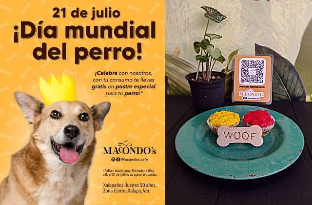 Cafetería xalapeña regala pastelitos a los perros en su día