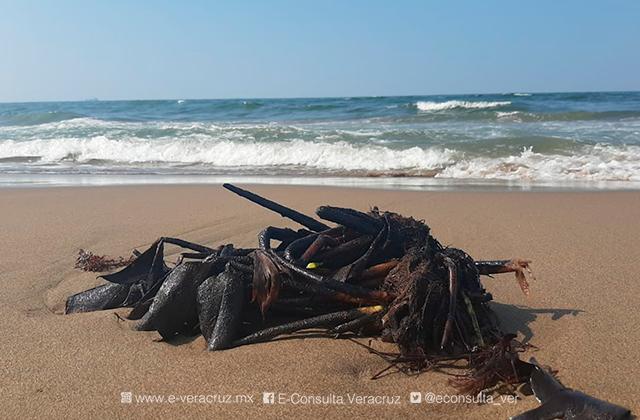 Pescadores denuncian nuevo ecocidio en playas de Coatza