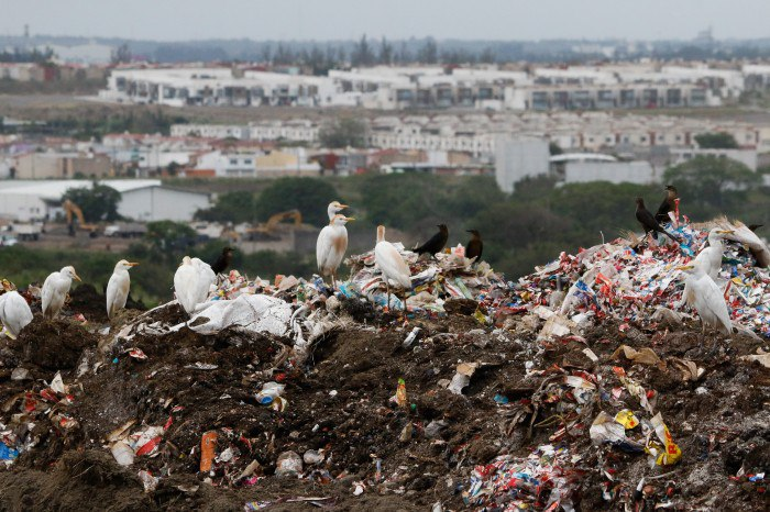 Alcaldes en la mira de la Procuraduría del Medio Ambiente por tiraderos a cielo abierto
