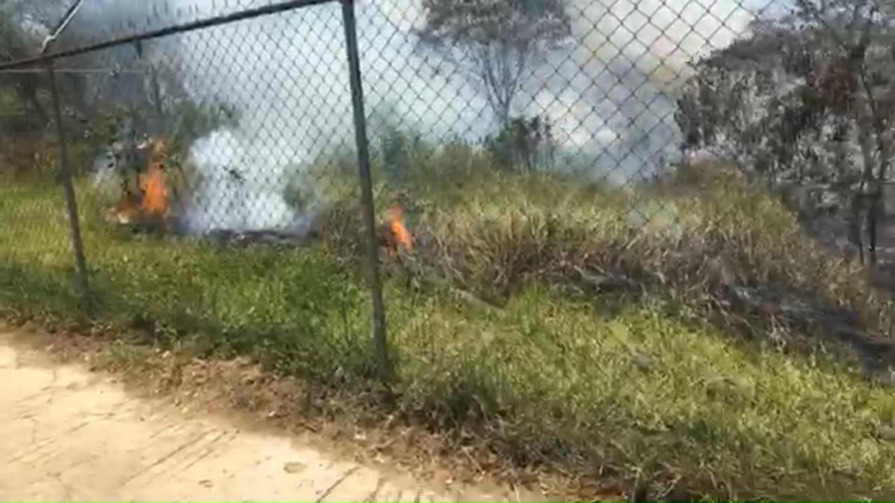 Incendio en terreno frente al Cobaev en Xalapa