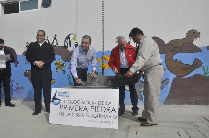 Inician obra de 'Pingüinario' en Acuario de Veracruz