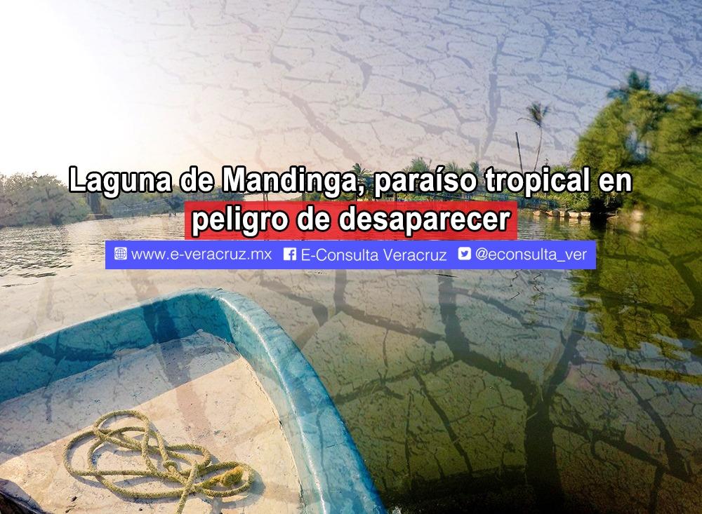 Laguna de Mandinga, paraíso tropical en riesgo de desaparecer