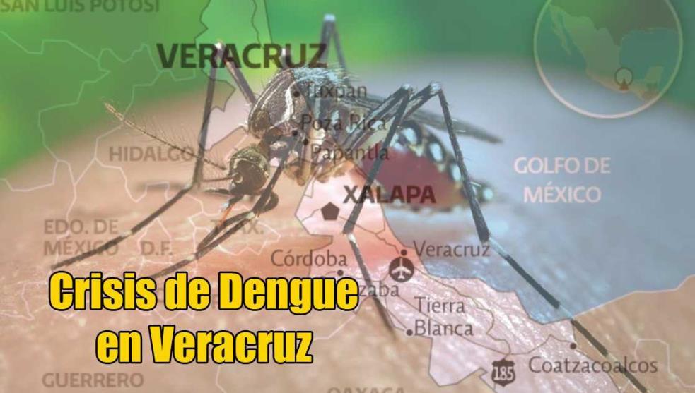 Esto es lo que debes saber de la crisis del dengue
