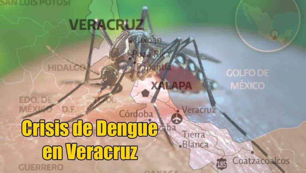 Dengue no da tregua a Veracruz, acumula 7,091 casos