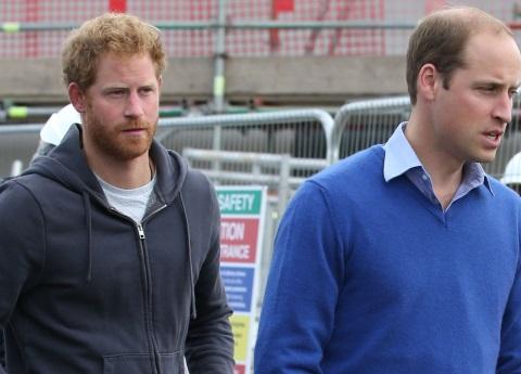 La última llamada de William y Harry con la princesa Diana