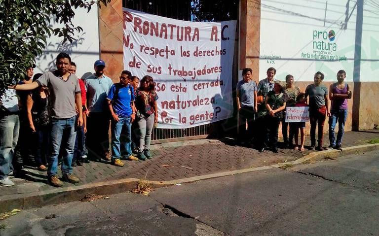 Denuncian despido injustificado de 26 empleados de ProNatura
