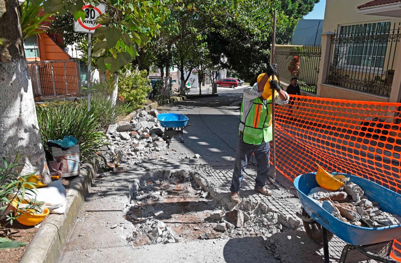 Rehabilitarán Paseo de las Araucarias en Xalapa