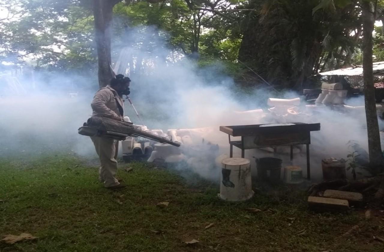 Retoman acciones preventivas contra el dengue en Veracruz