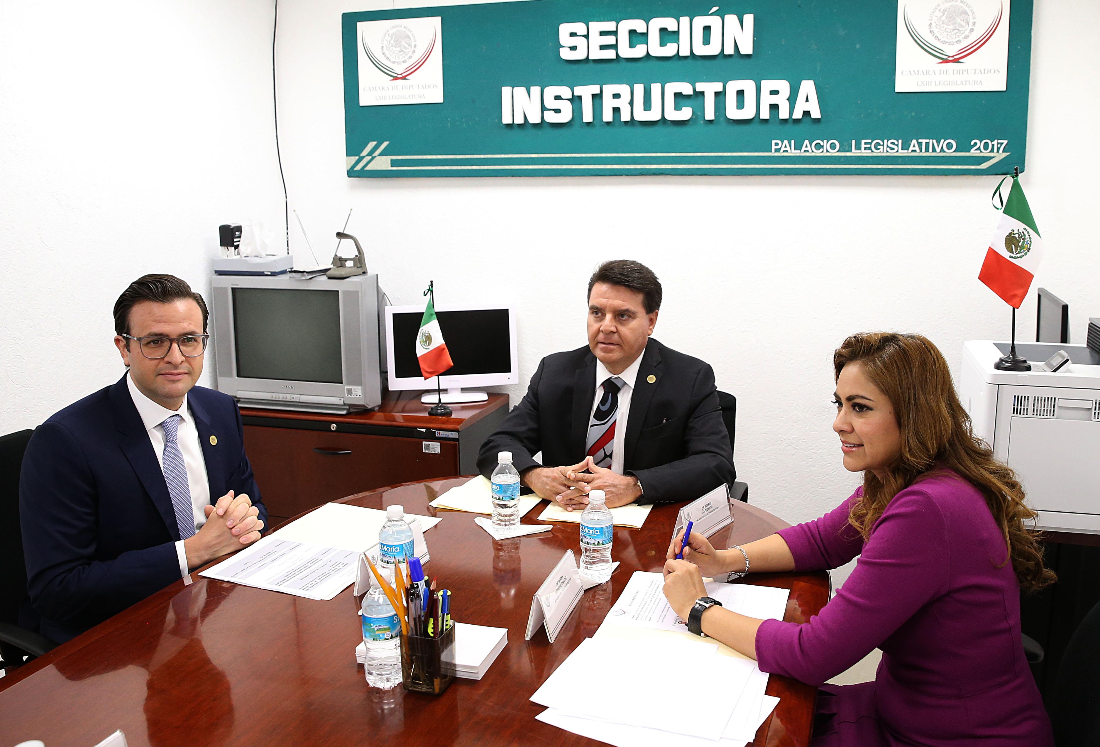 Se declara sin materia la sección instructora en el caso de Eva Cadena Sandoval: Ricardo Ramírez Nieto