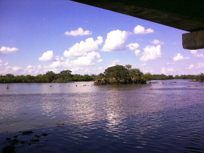 Ley General de Aguas se olvida de proteger las cuencas de ríos