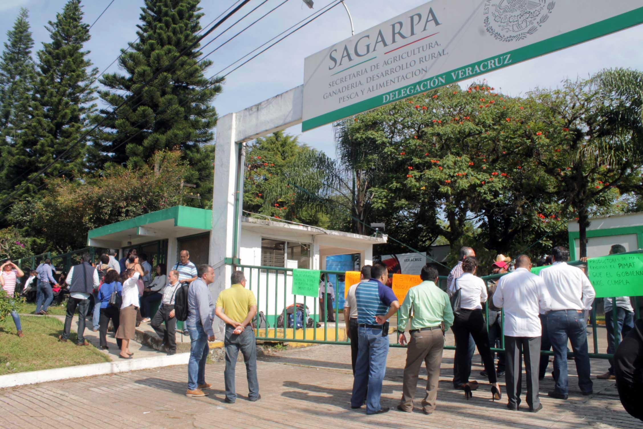 Campesinos veracruzanos protestarán en oficinas de Sagarpa en la capital