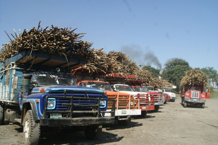 Productores toman instalaciones de la CNC en San Miguelito
