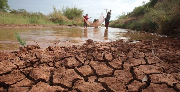 Sequía afecta a municipios de Veracruz; siete en nivel extremo