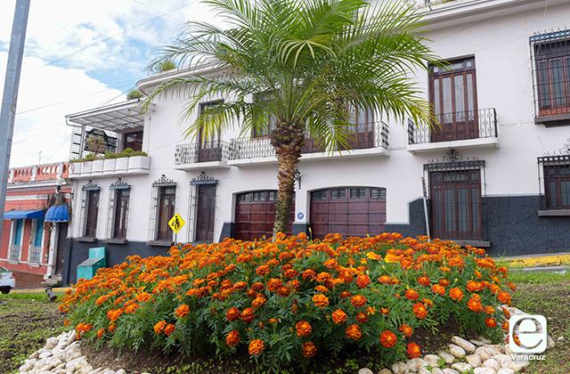 Habrá más de 13 mil flores de cempasúchil en Xalapa