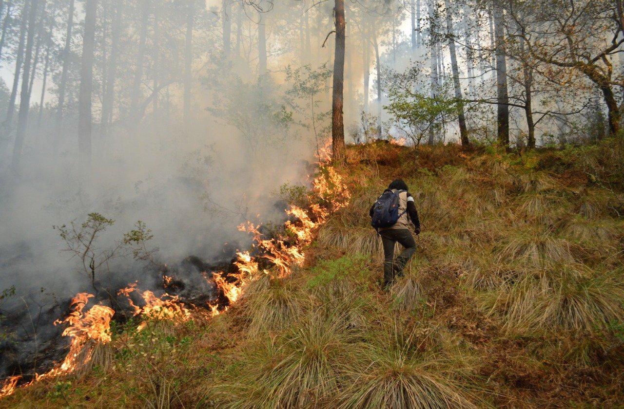 Otro incendio forestal, ahora en Las Vigas