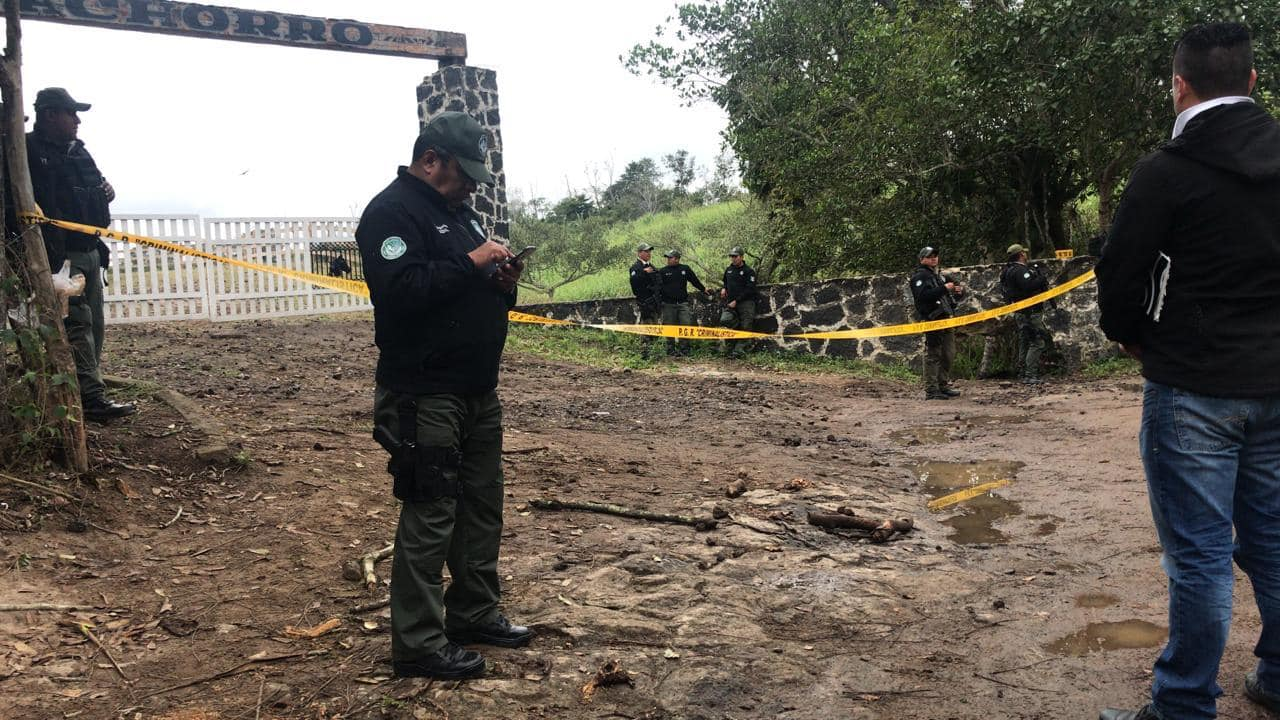 """SSP en Veracruz recupera 100 vacas robadas a """"SuKarne"""""""