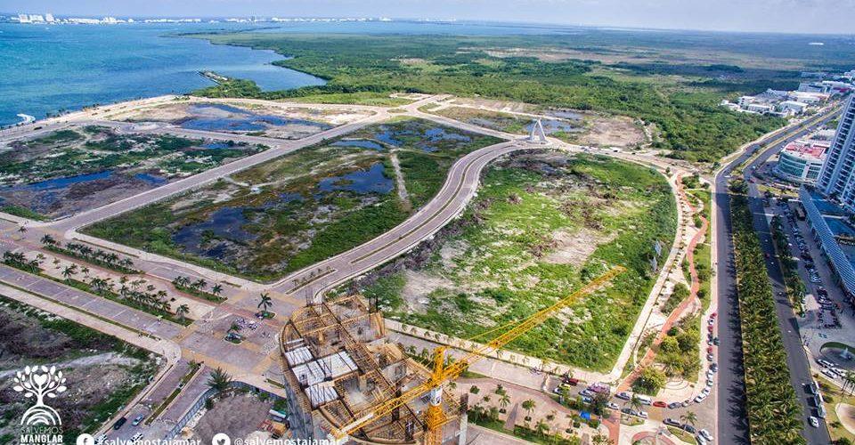 Un estudio irregular de Semarnat dejó sin protección el manglar Tajamar