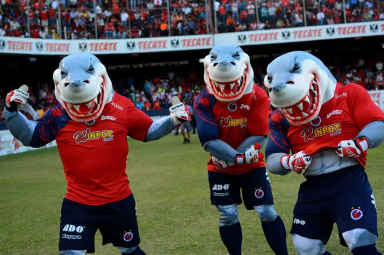 Dobles contratos: SAT ya intervino cuenta de los Tiburones Rojos
