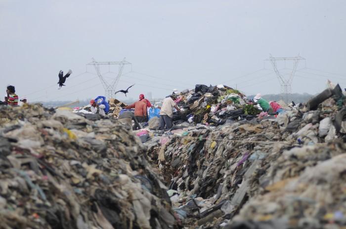 Sedema reconoce alrededor de 800 basureros ilegales en Veracruz