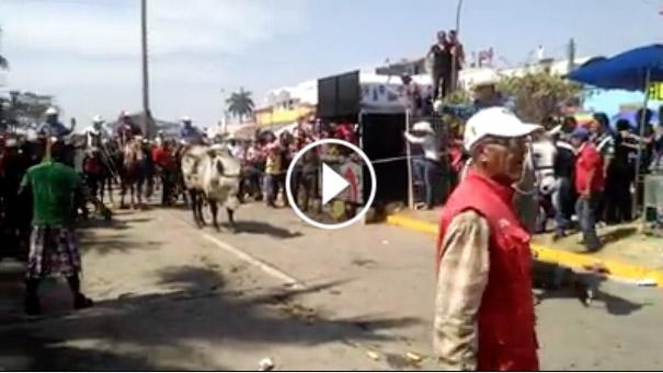 Toro embiste ambulancia con heridos en fiestas de Tlacotalpan