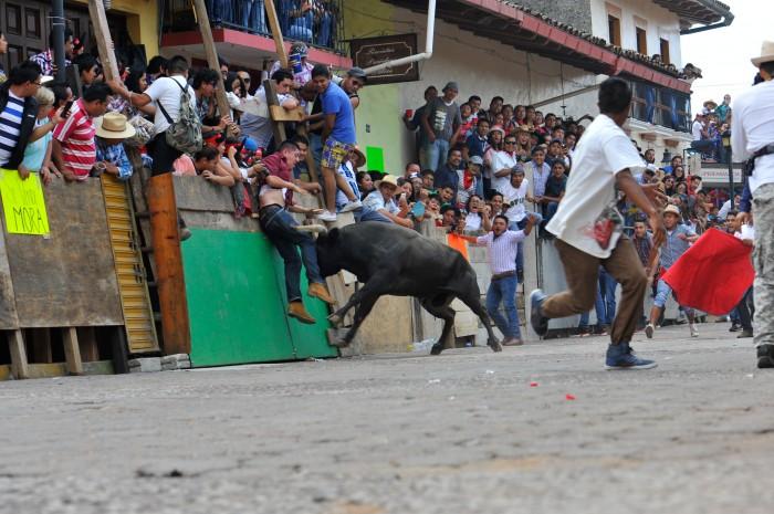 Turismo estatal se deslinda de lesionados en sueltas de toros