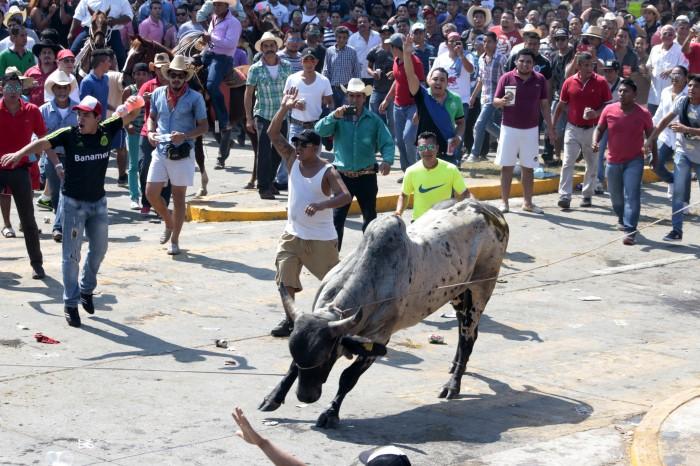 Permitirán suelta de toros en fiestas, pero sin maltrato: Sectur