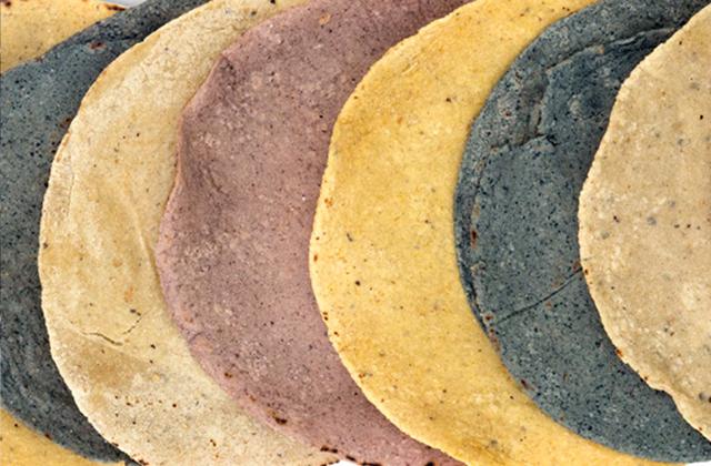 Confirman molineros aumento al precio de la tortilla, en Veracruz