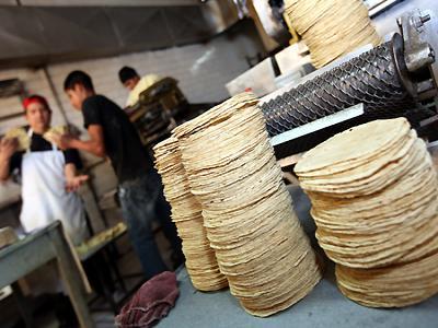 Por alza en costo de harina e insumos, sube el precio de la tortilla en Veracruz