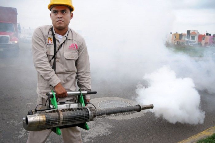 Veracruz ya es cuarto lugar nacional en chikungunya