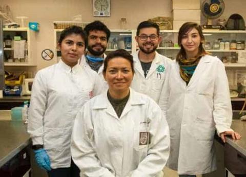 Científica mexicana desarrolla terapia para eliminar VPH en mujeres
