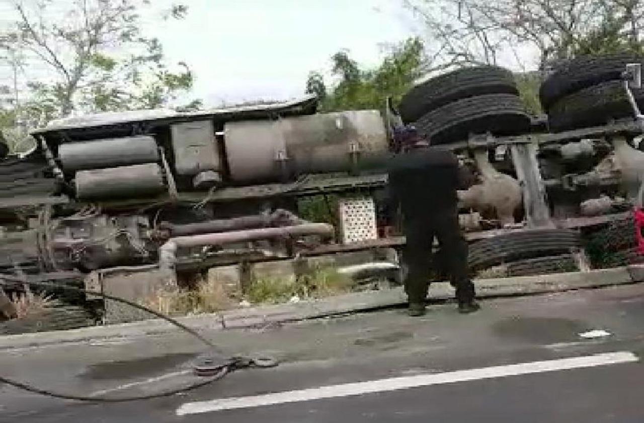 Vuelca tráiler con cerdos en carretera federal Veracruz-Cardel