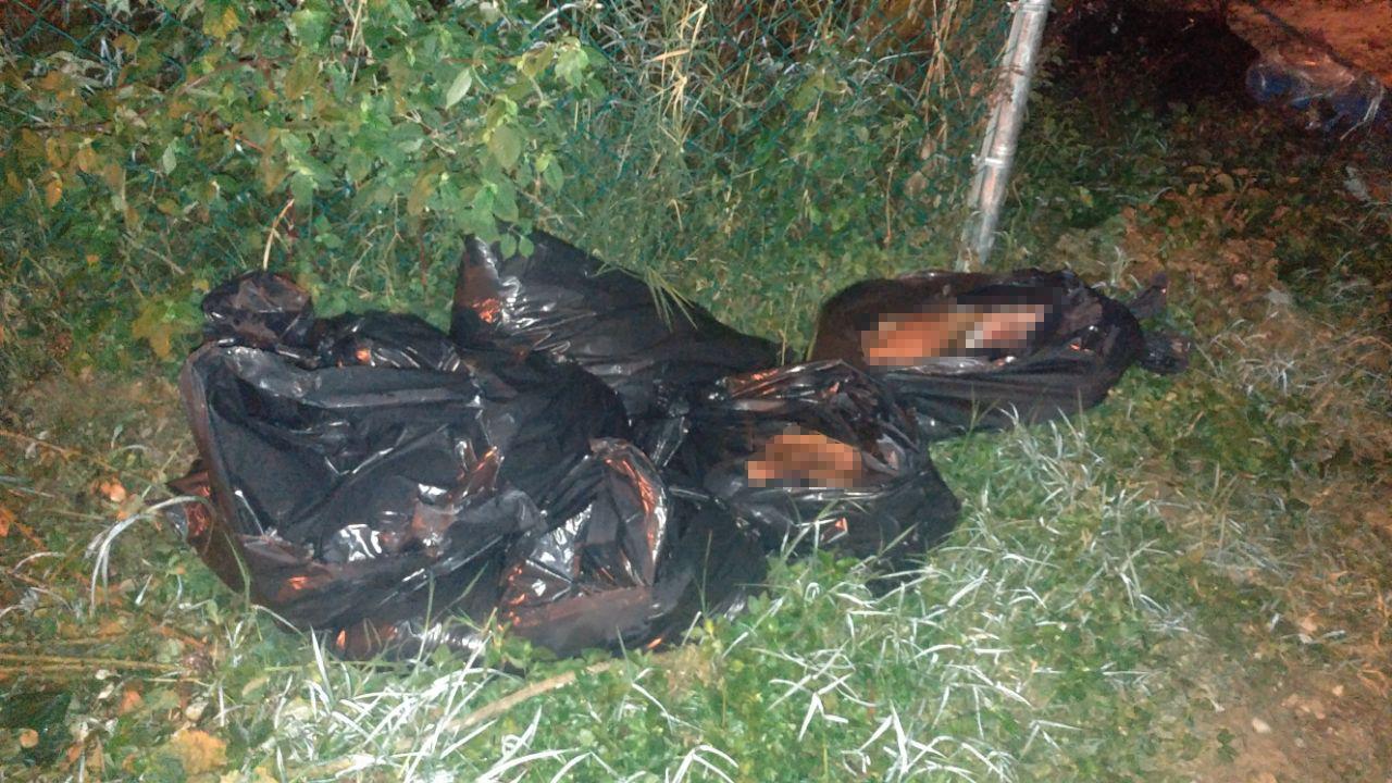 Encuentran 11 bolsas con restos humanos en El Tejar, Xalapa