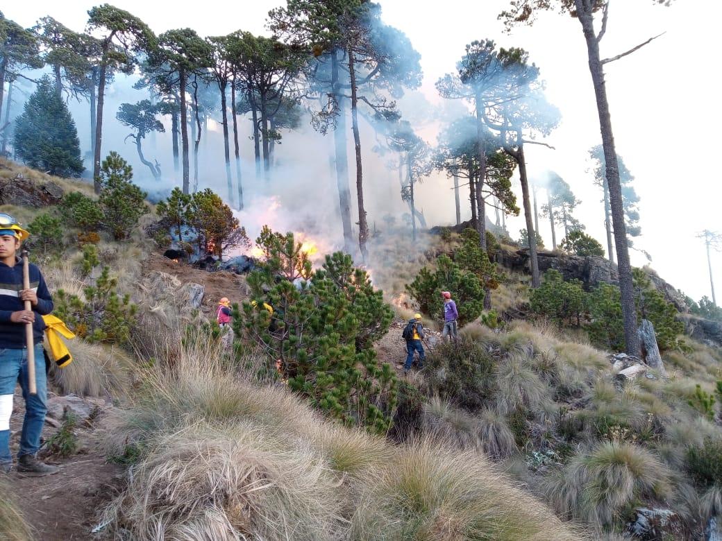 Veracruz registra 6 incendios forestales en los primeros días de 2020