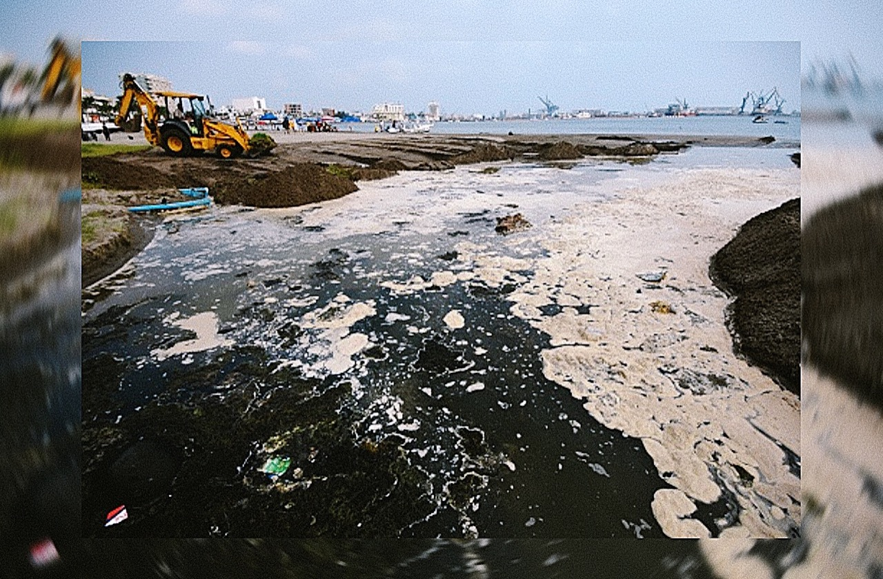 Covid y las consecuencias que podría traer al ecosistema marino