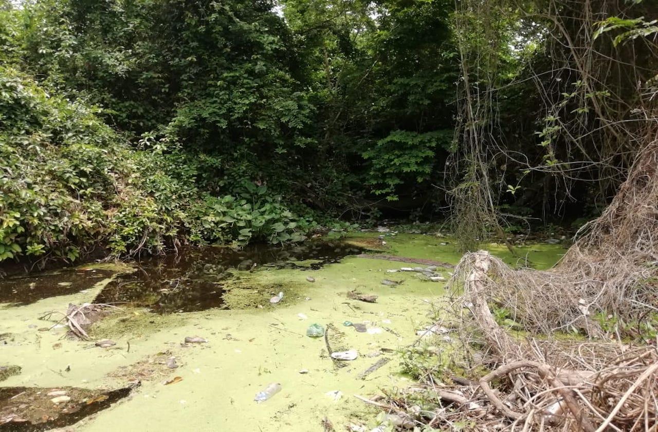 Río Limones agoniza por desinterés de las autoridades