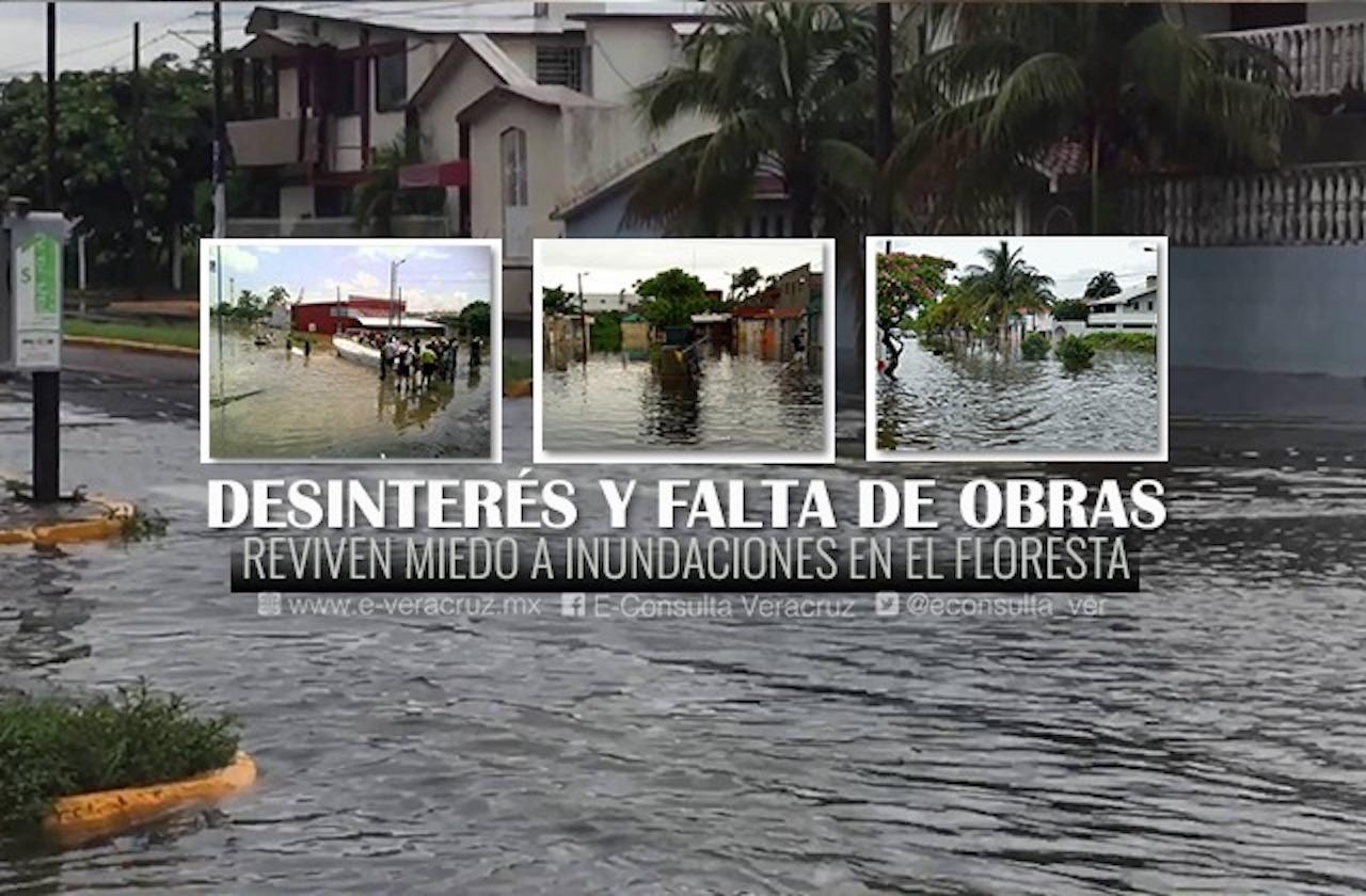 Resurge miedo por inundaciones en fraccionamiento Floresta