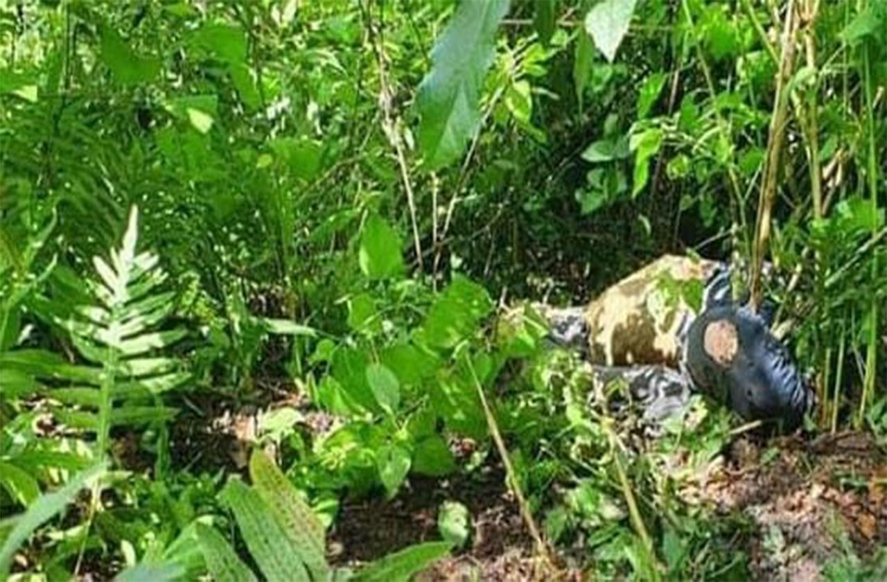 Con huellas de tortura localizan restos humanos en Maltrata