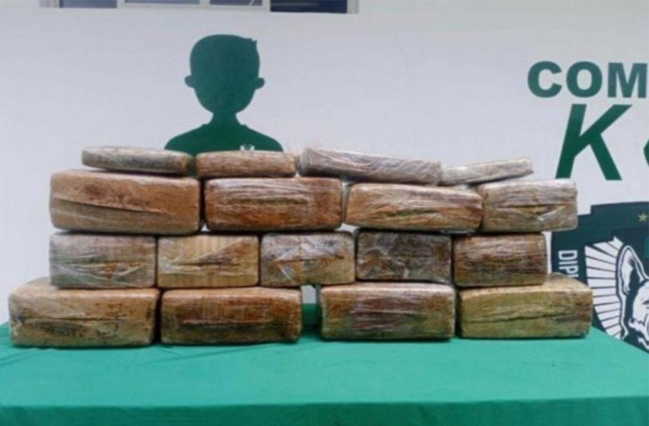 Caen mujeres con 16 'ladrillos' de cocaína en Maltrata