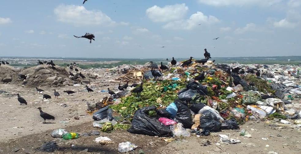 Tardía pero oportuna clausura de basurero: ambientalista