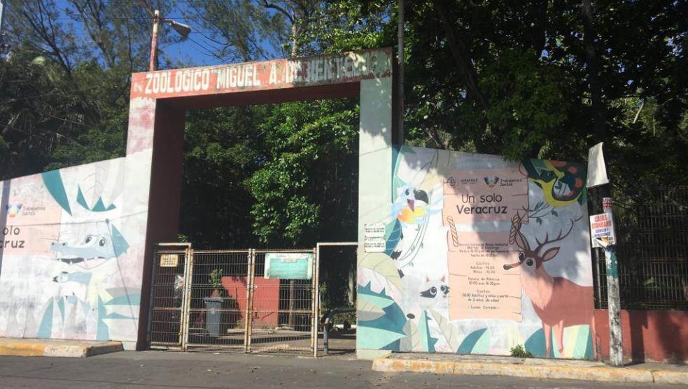 Gobierno de Yunes suma 77 muertes en Zoológico de Veracruz