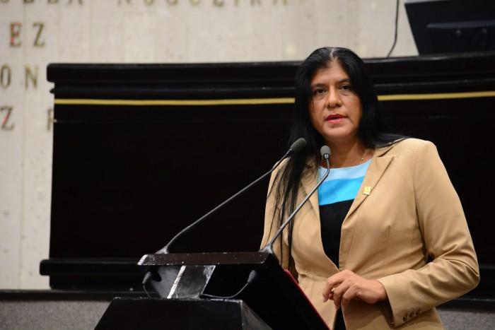 Se necesita dinero para consolidar Plan Veracruzno de Desarrollo: PRD
